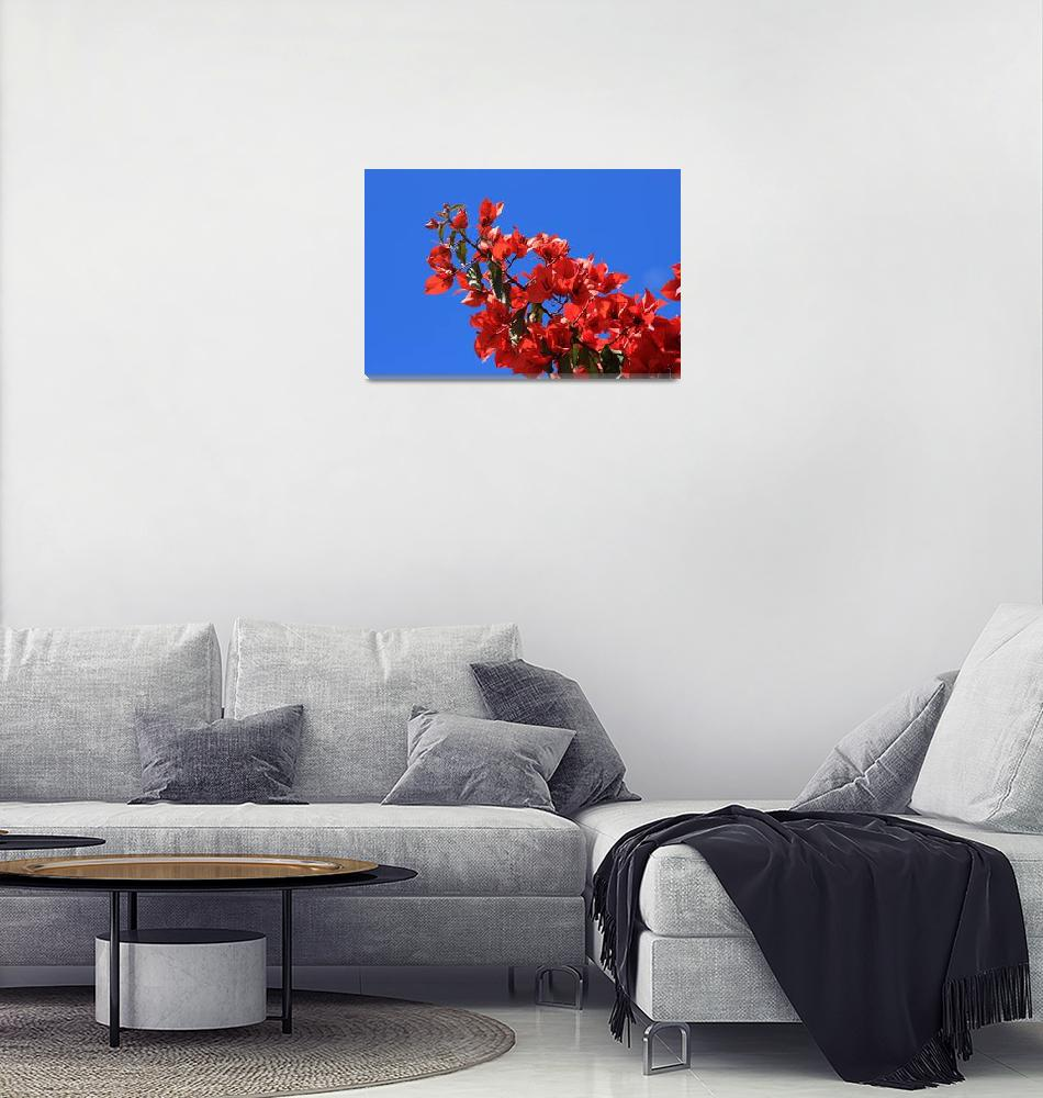 """""""Red Blossoms on a Tree""""  (2015) by rhamm"""