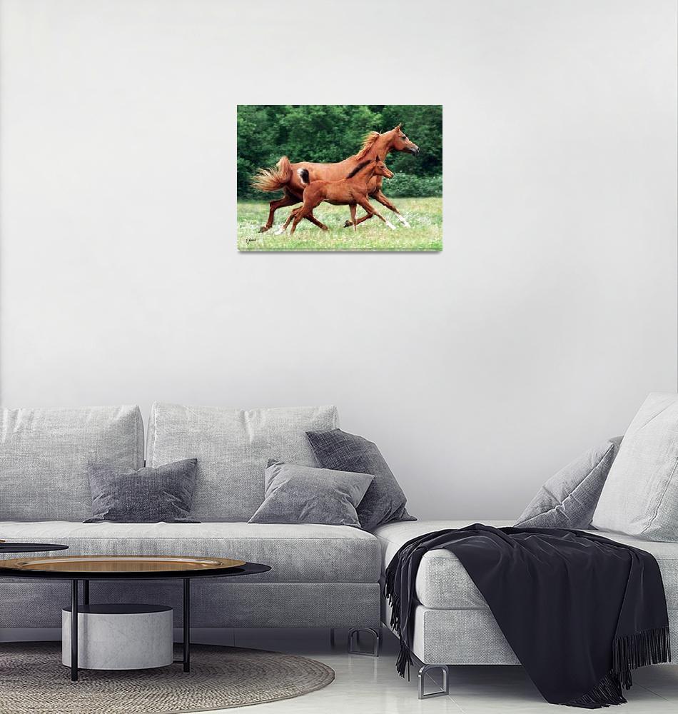 """""""Arabian mare&foal""""  by jaygoss"""