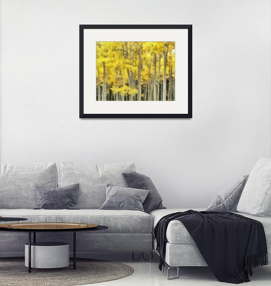 """""""Birch Trees""""  (2011) by carlisconcepts"""
