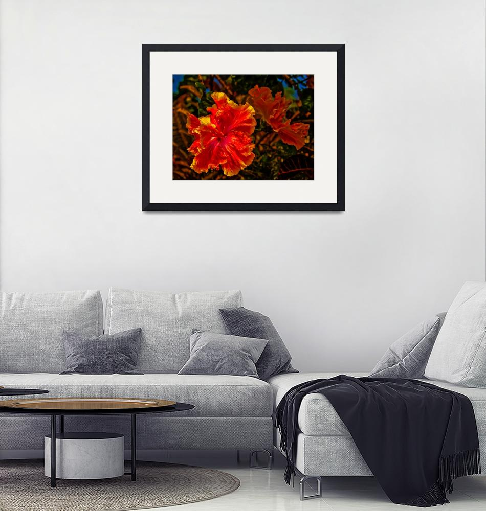 """""""Yellow and Orange Double Hibiscus""""  (2017) by jvittek"""