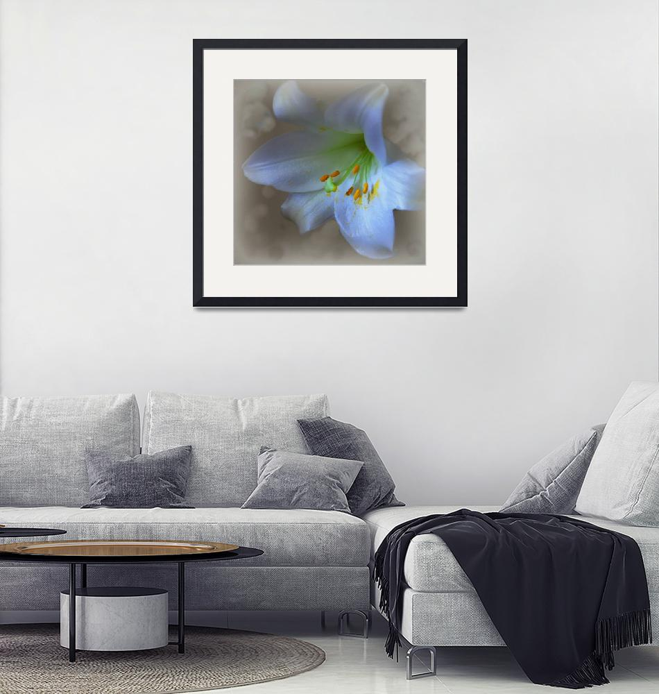 """""""lily""""  (2016) by suzydoodle"""