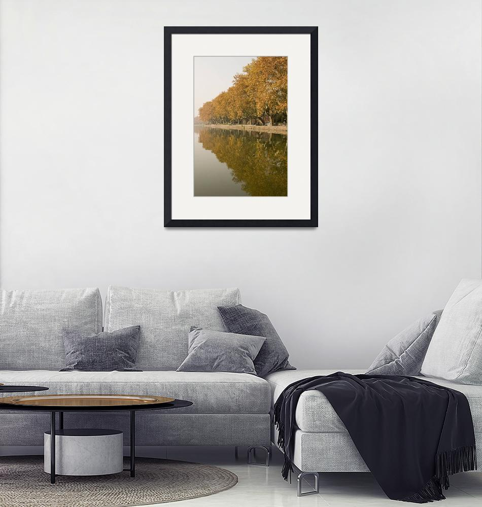 """""""West Lake Trees""""  (2007) by caplight"""
