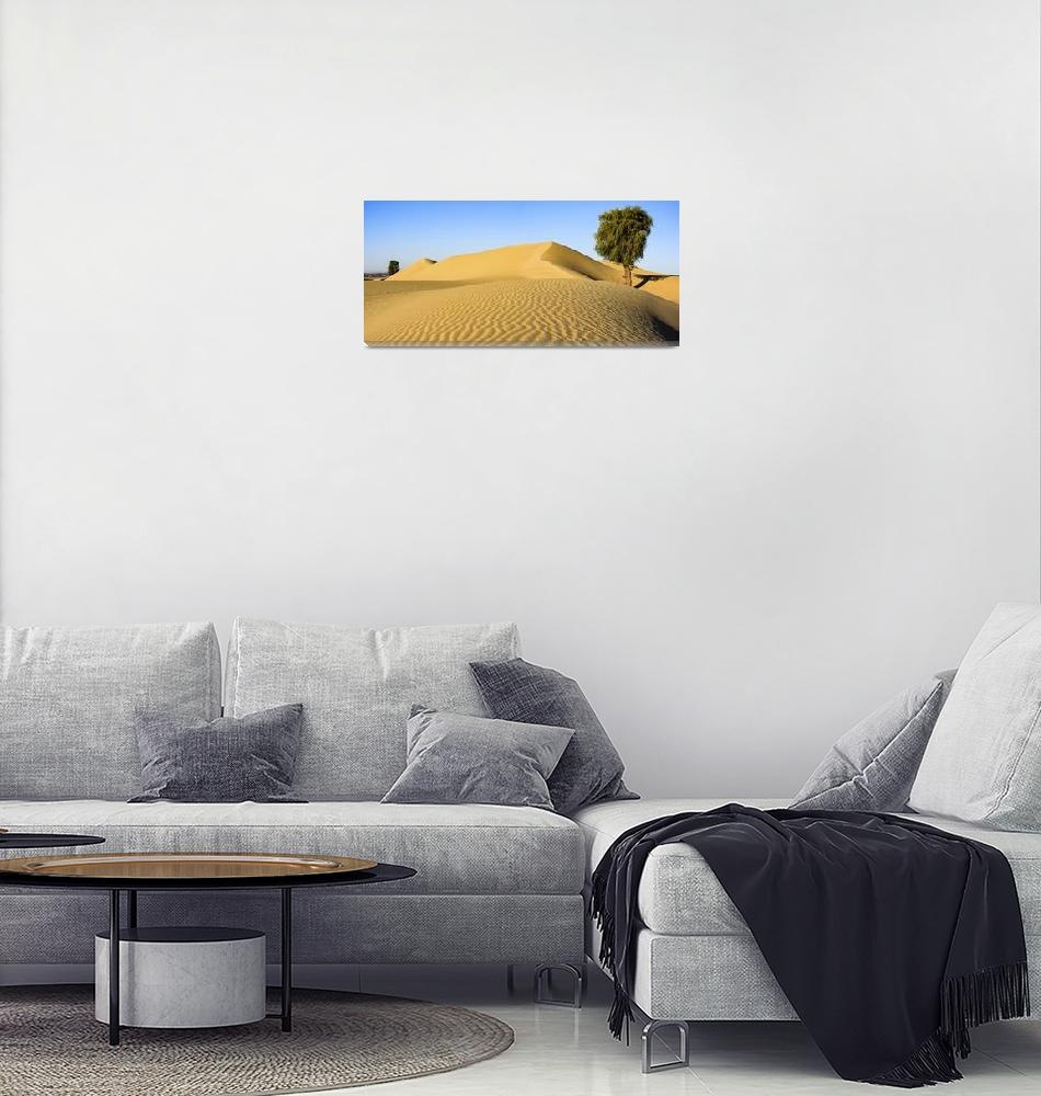 """""""Waves in the Desert""""  (2016) by DXB013"""