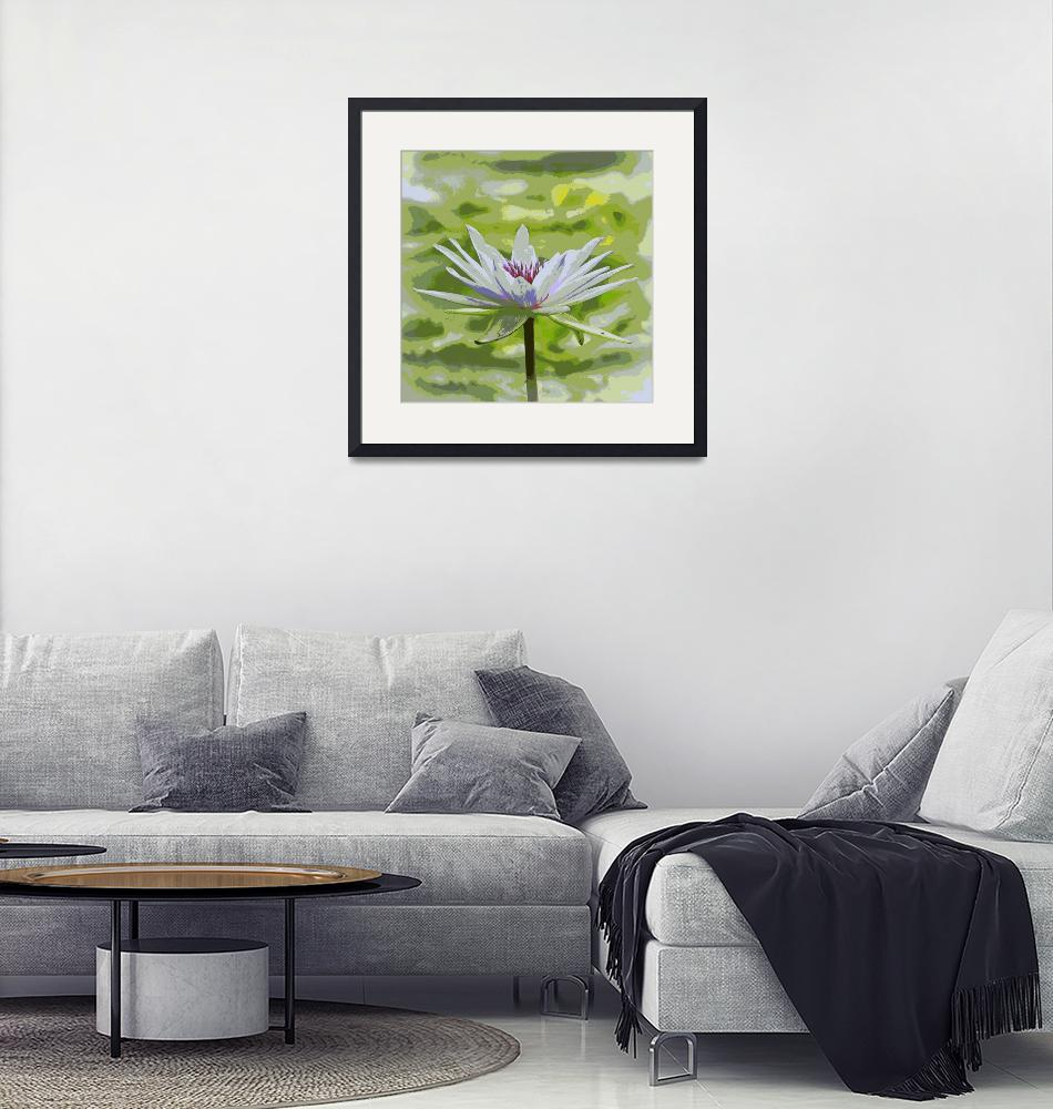 """""""Serene Water Lily""""  (2017) by Groecar"""