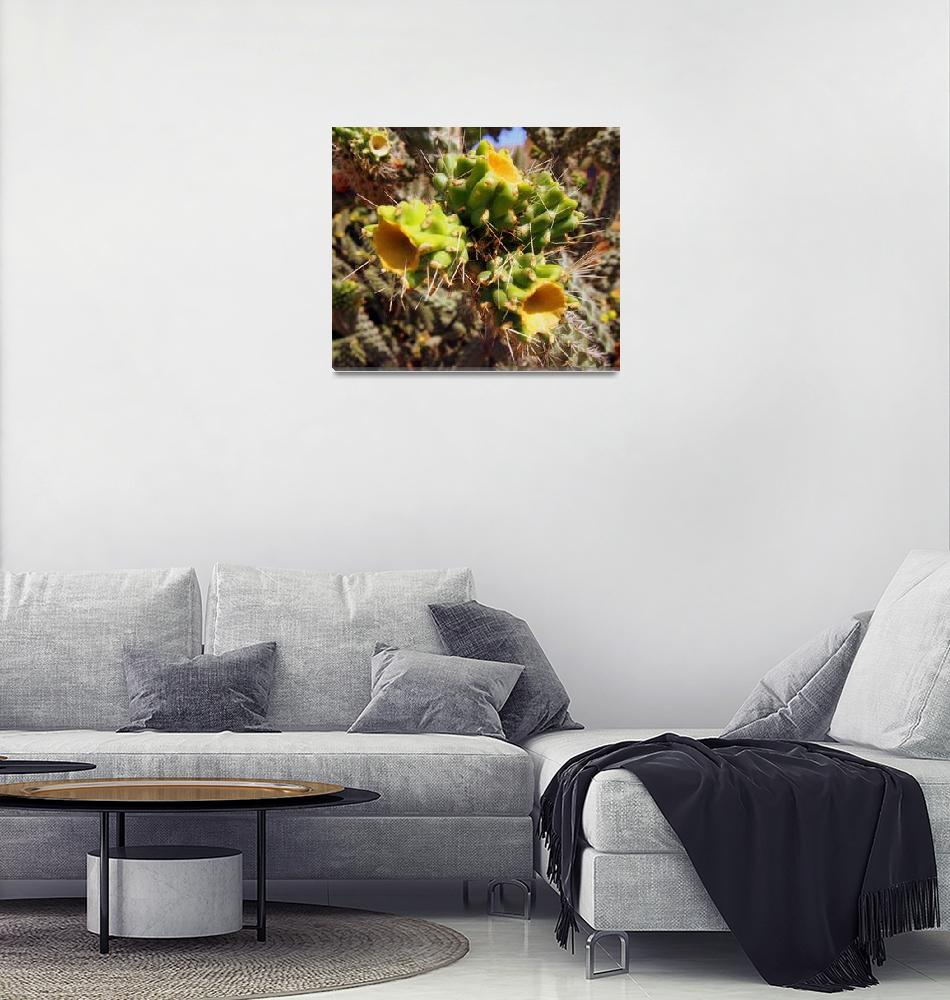 """Cyprus Needle Plant""  by Artsart"