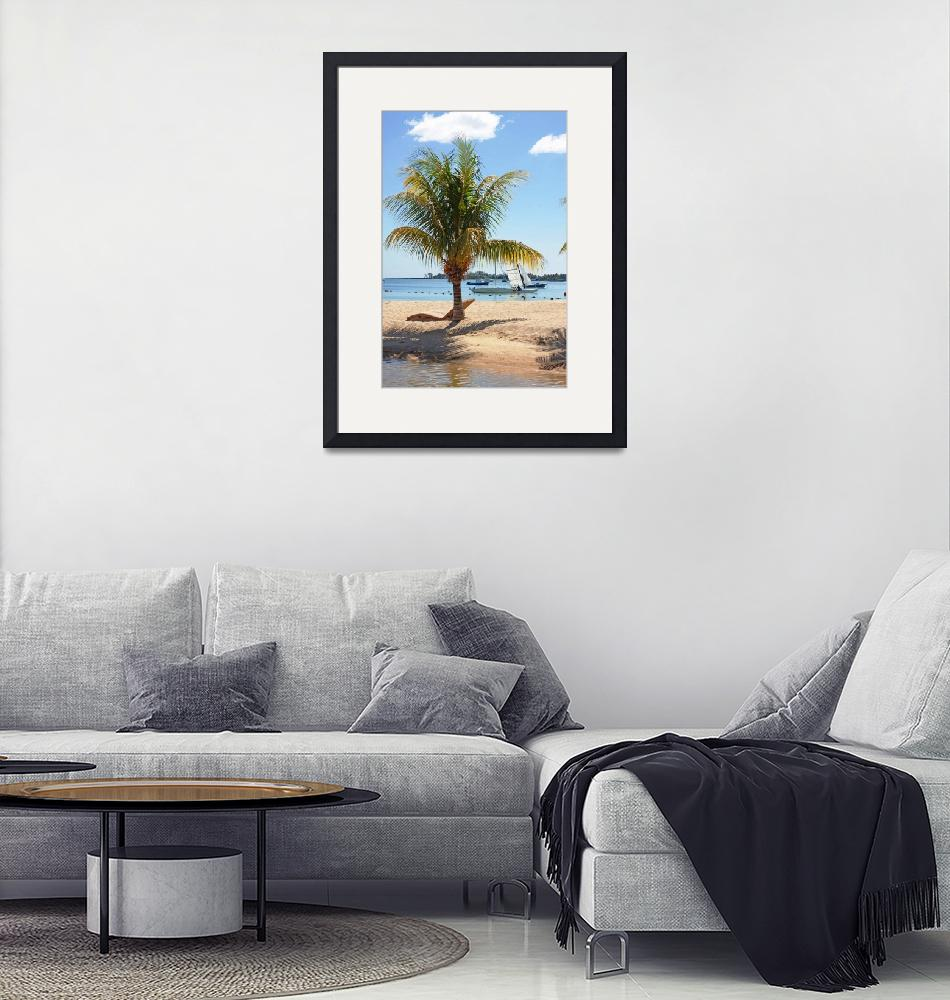 """coconut palm tree""  (2010) by Rajeshbac"