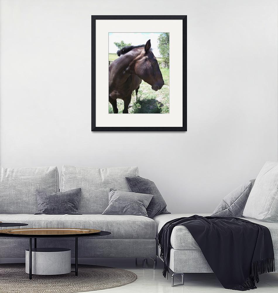 """""""Ranch horse profile""""  (2007) by aswendener"""