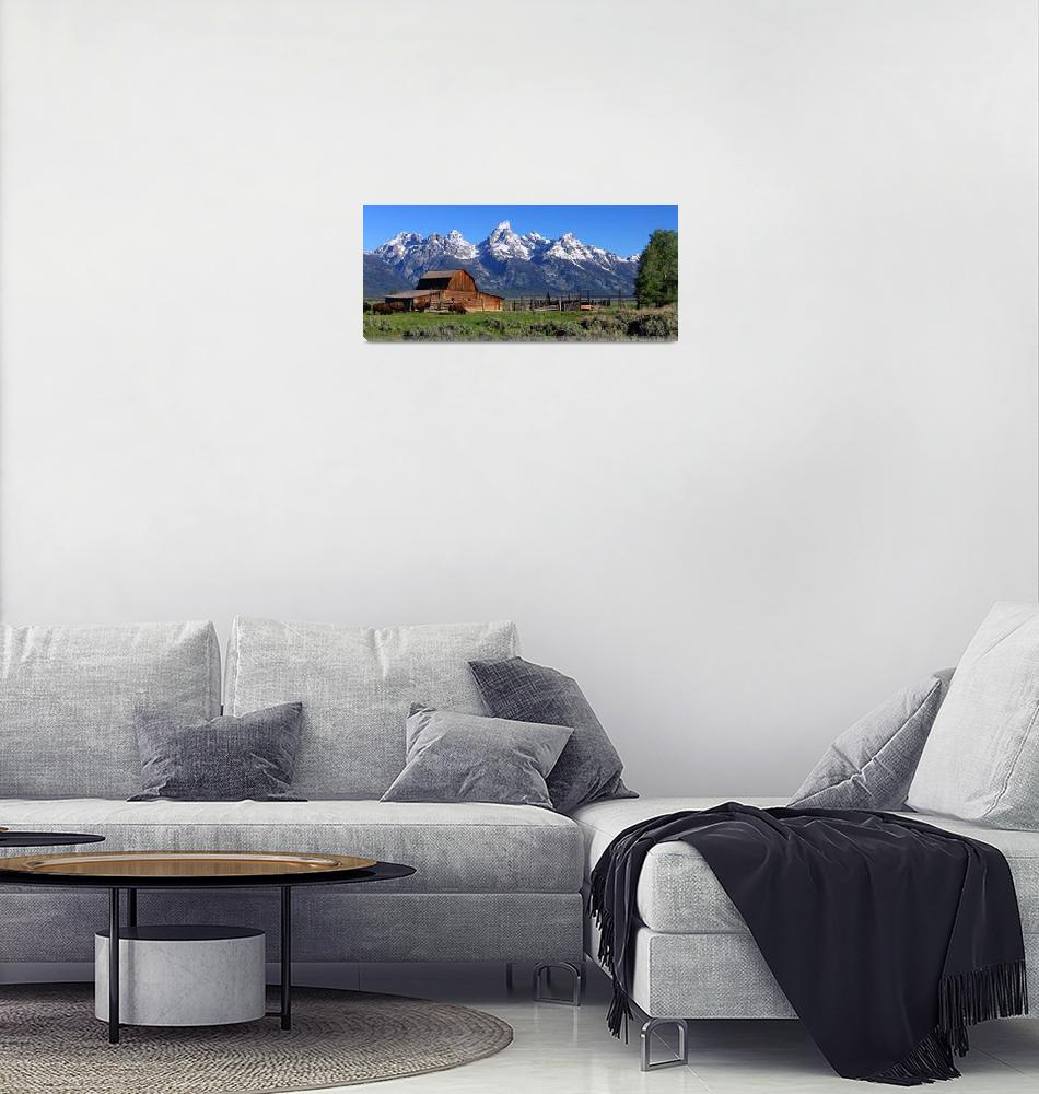 """""""Bison At The Barn Panorama""""  (2010) by dkocherhans"""