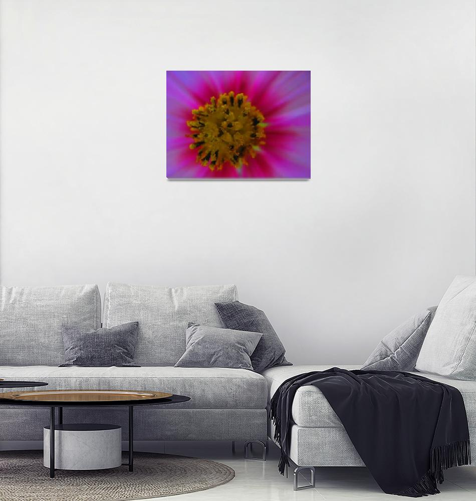 """""""Flower Saturated""""  (2008) by Jonsart"""