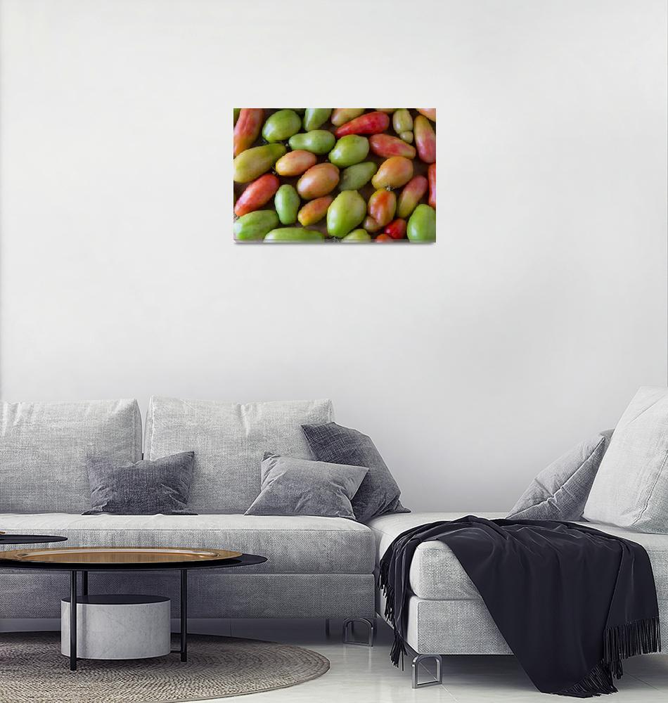 """""""Colorful Roma Tomatoes""""  (2016) by lightningman"""