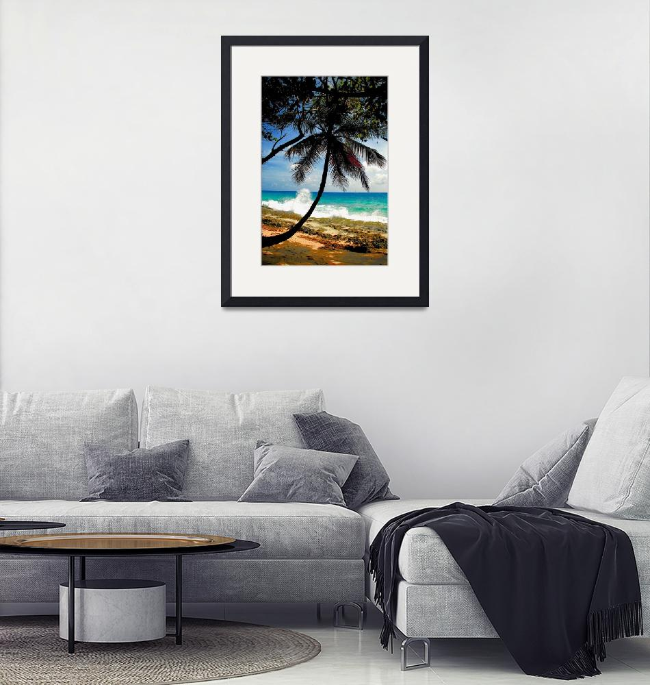 """""""Seychelles Palm Beach""""  by StephenPoffPhotography"""
