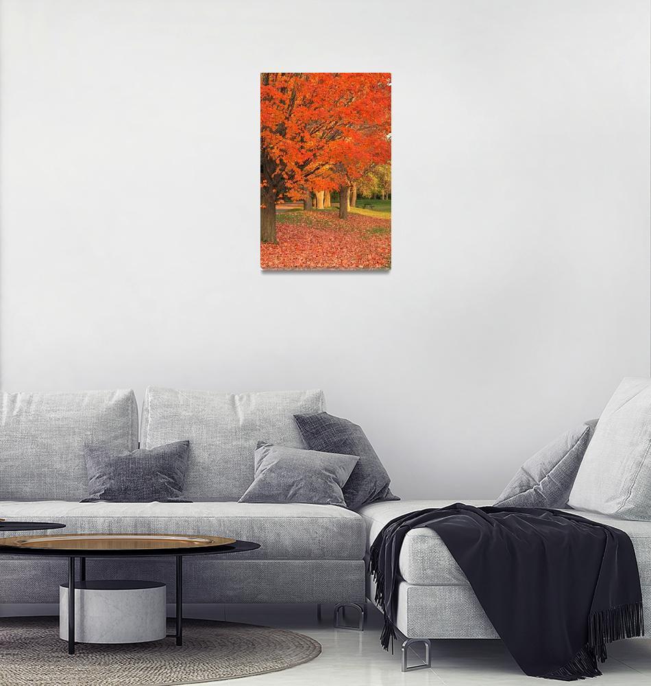 """""""Autumn Tree""""  (2008) by BevMummery"""