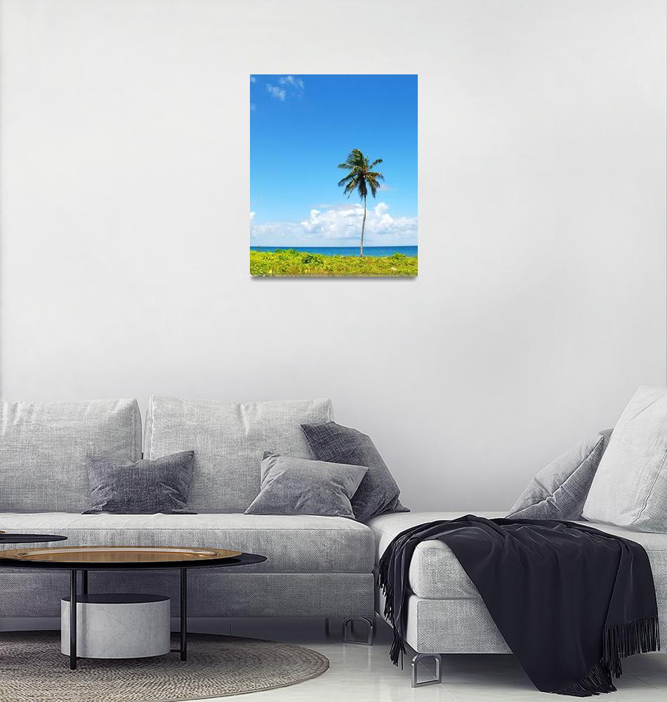 """Lone Palm""  (2011) by monicadowns"