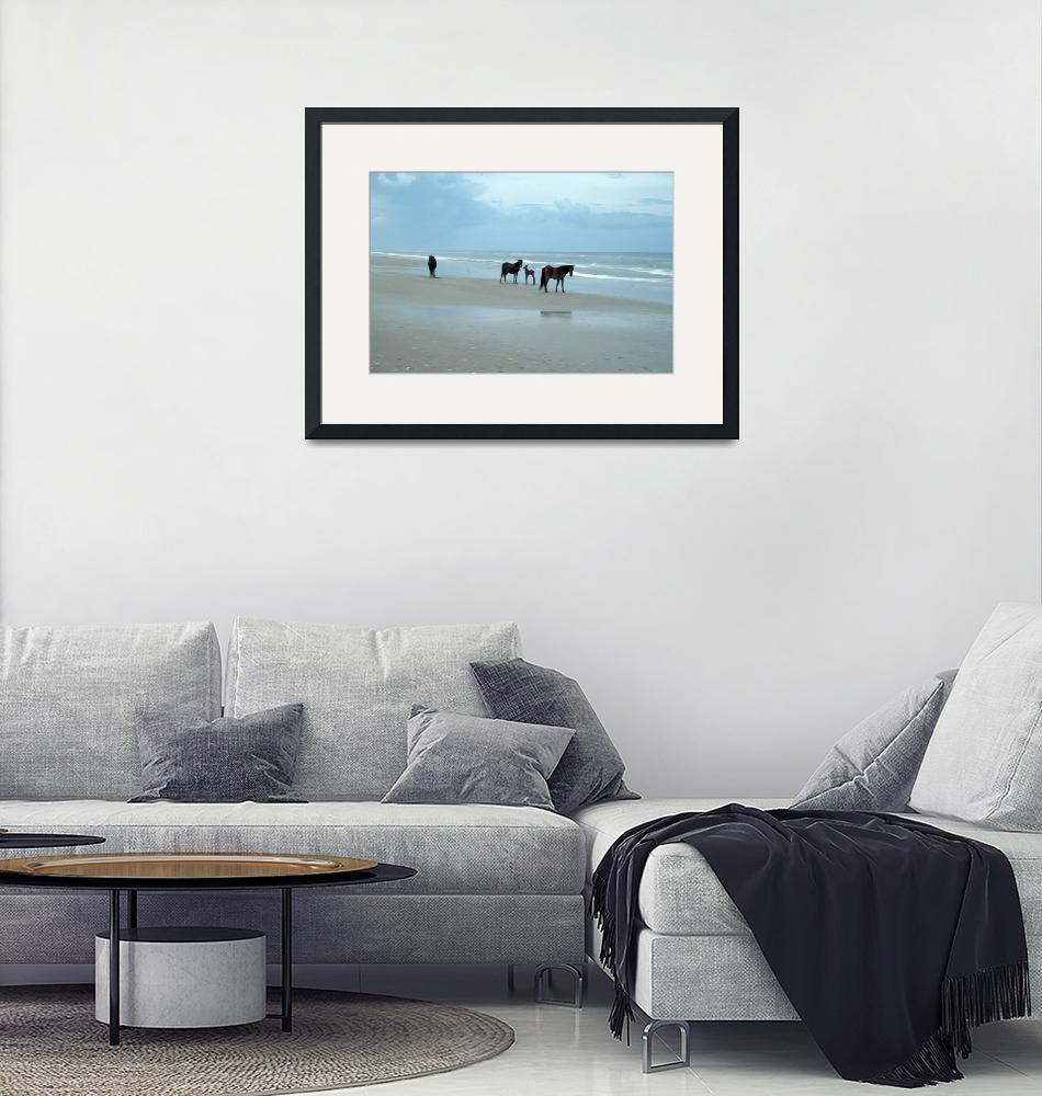 """""""OBX Horses with Young""""  (2010) by kelvinbooker"""