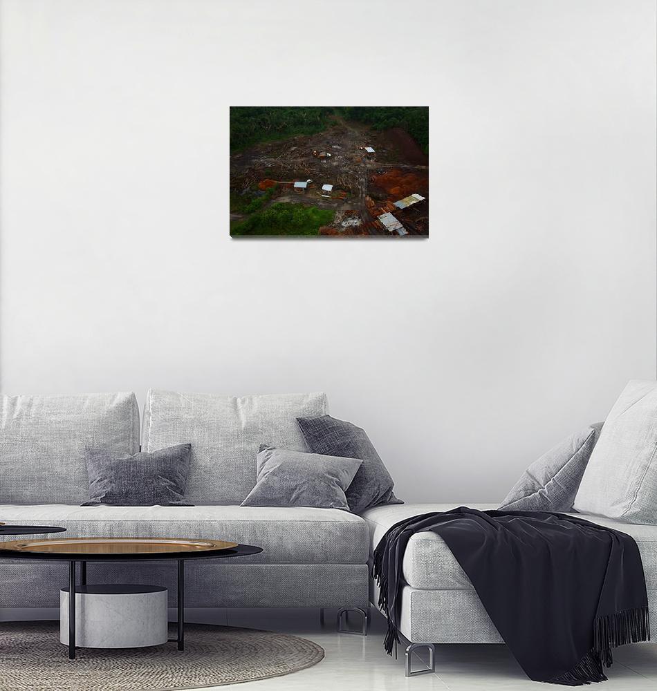 """Belize log industrial site.""  (2017) by ThomasJens"