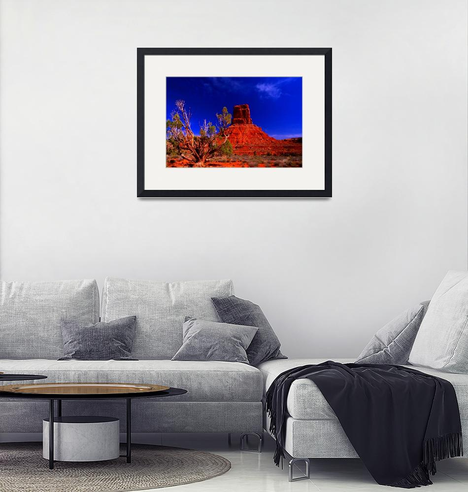 """""""Valley of the Gods""""  (2007) by jwoodphoto"""