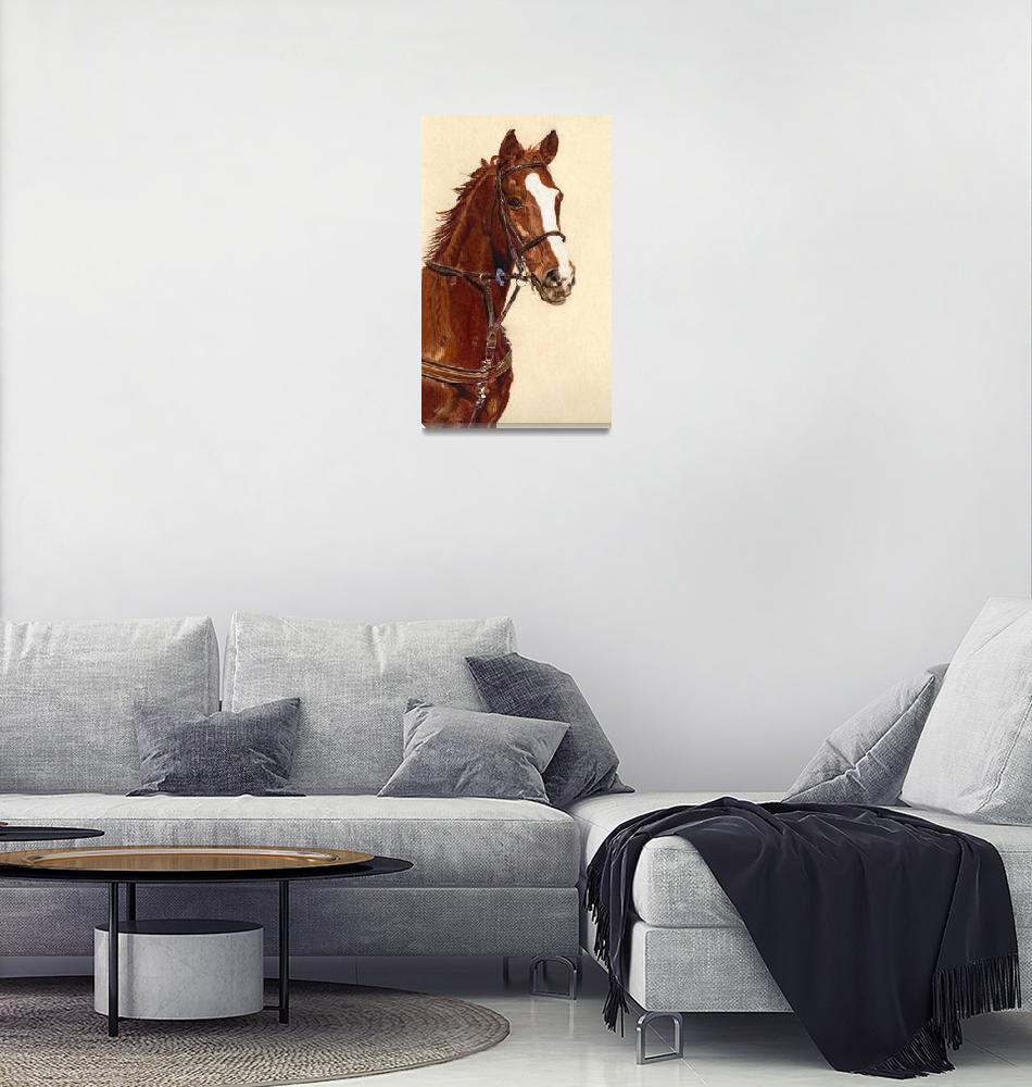 """""Proud"" Horse Colored Pencil Art""  (2010) by PatriciaBarmatz"
