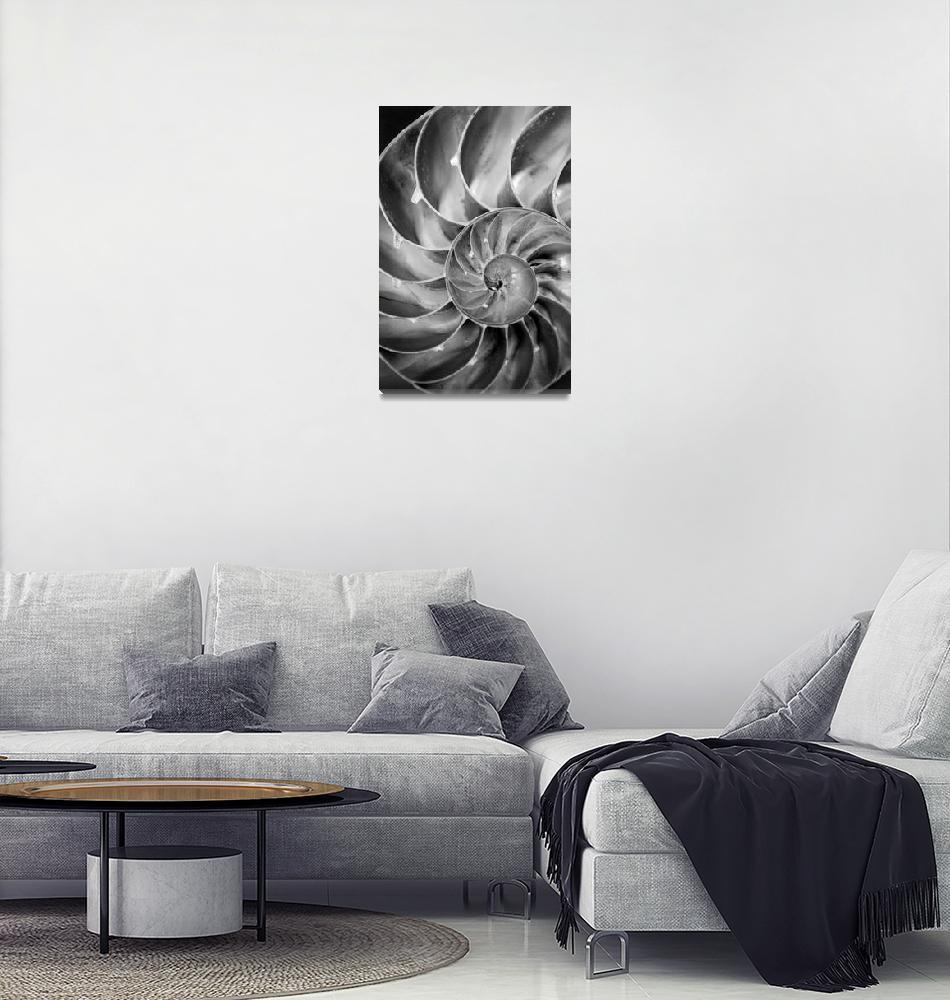 """Fibonacci""  (2012) by KjWorthing"