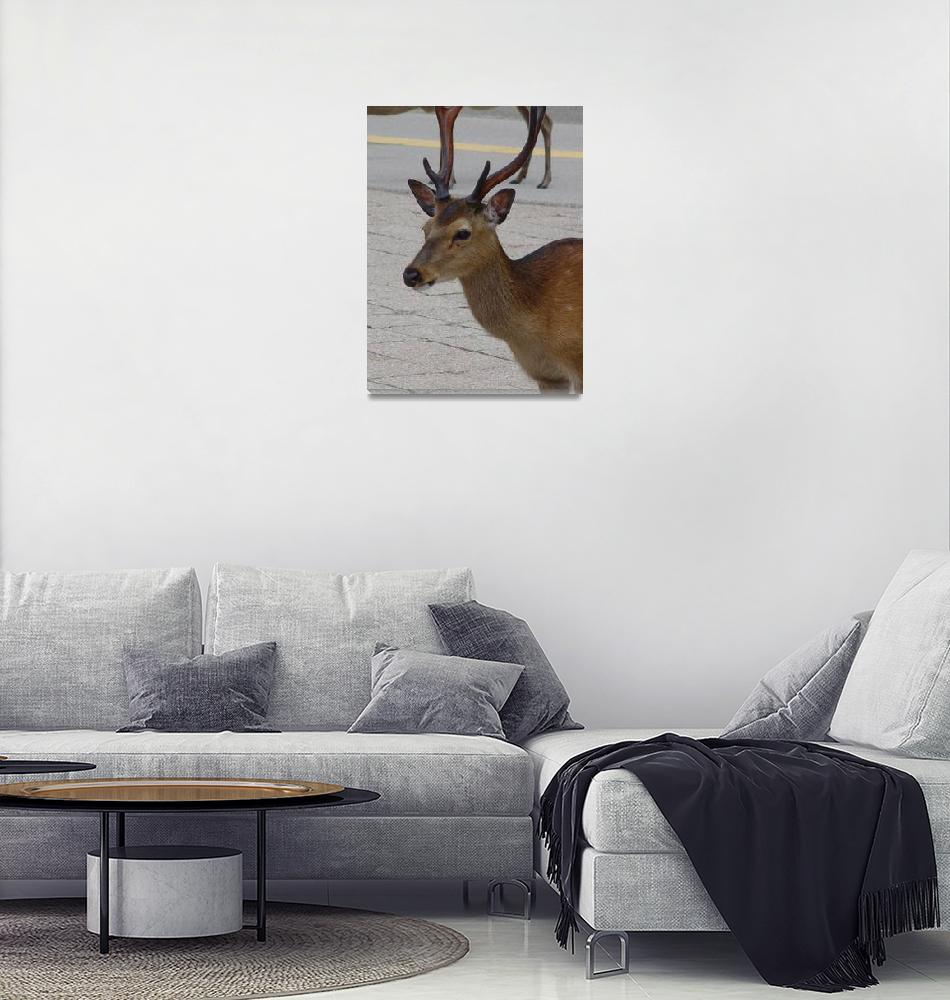 """Deer on Miyajima Island Japan""  (2006) by Mixxy"