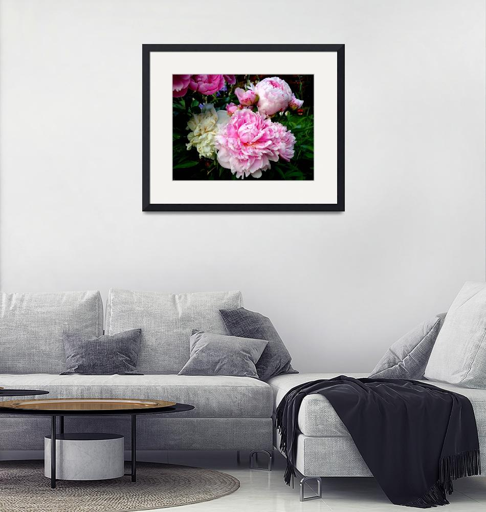 """Pink and White Peonies""  by FlyingSwanStudio"