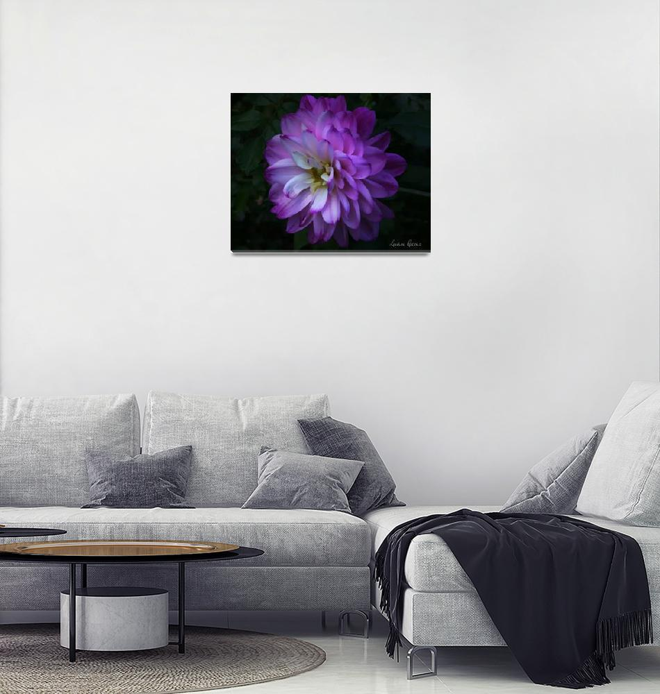 """Purple Dahlia""  (2015) by LouiseReeves"