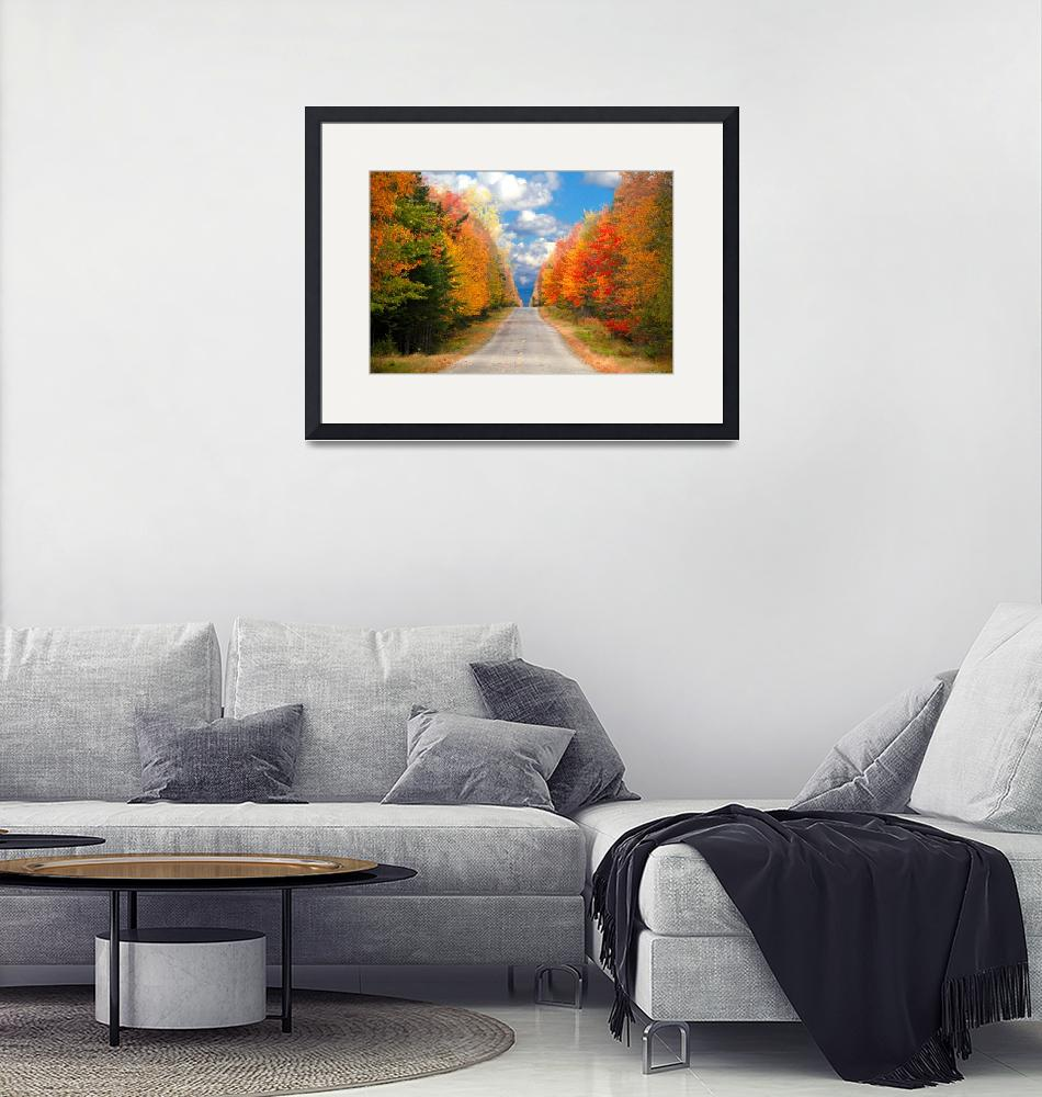 """""""New England Fall Photo Canvas""""  (2010) by TDSwhite"""