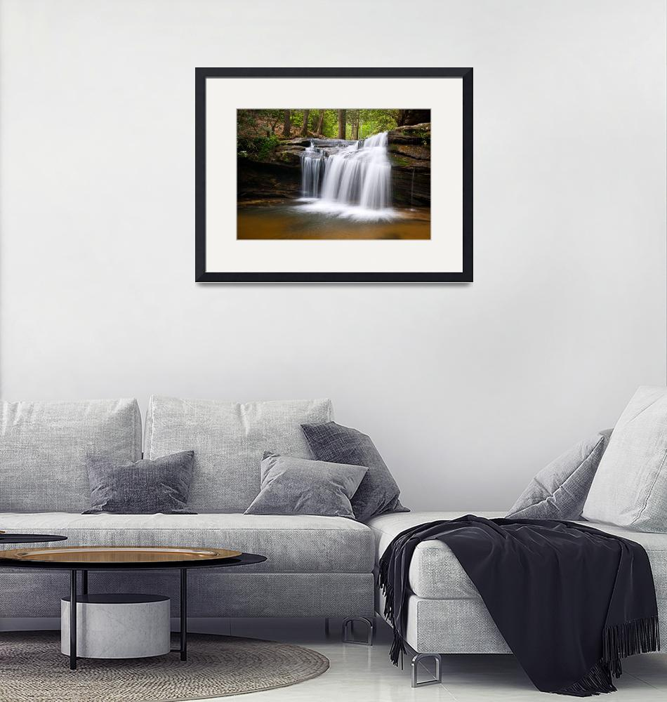 """Waterfall on Carrick Creek - Table Rock State Park""  (2011) by DAPhoto"