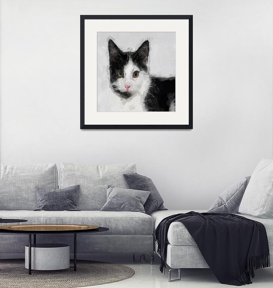 """""""Cat Black and White""""  (2013) by swagmaven"""