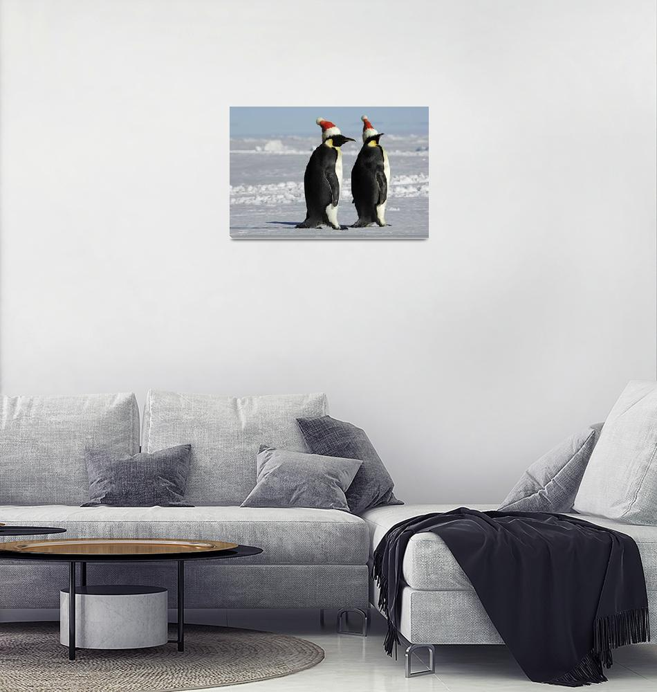 """""""Penguin couple on Christmas""""  by PougetSophie1982"""