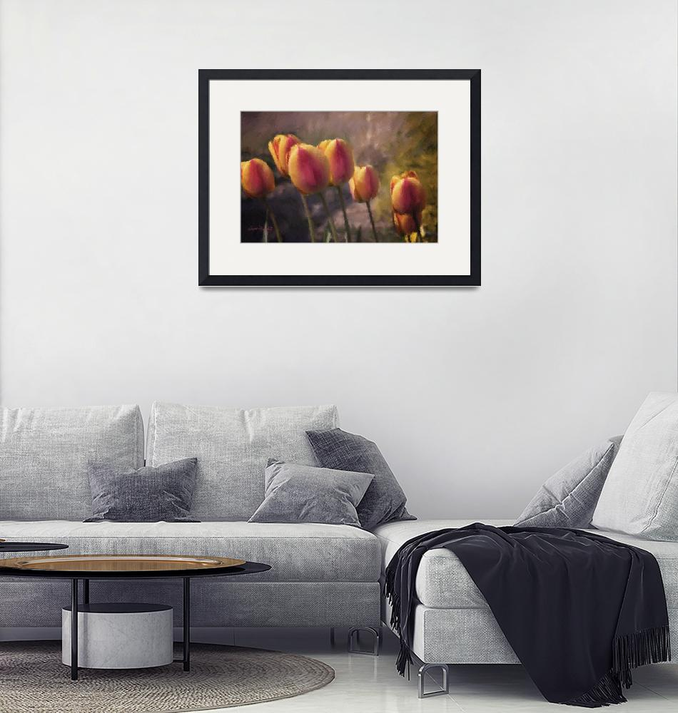 """""""SWAYING TULIPS""""  (2013) by shaynaphotography"""