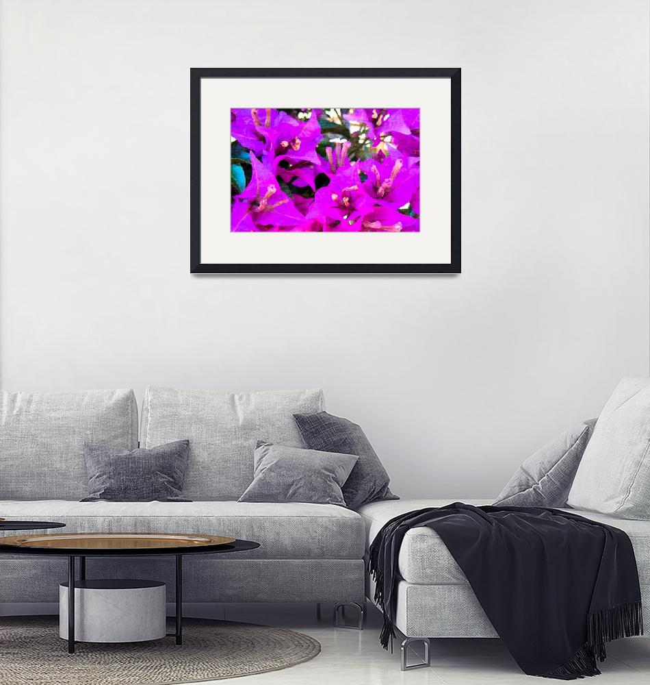 """""""Bougainvillea flowers in Italy two""""  (2015) by flowersinabstract"""