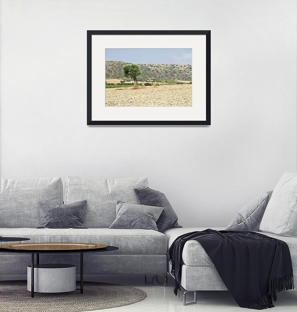 """summer landscape at Cyprus-Avdimou bay""  (2012) by EvripidouM"