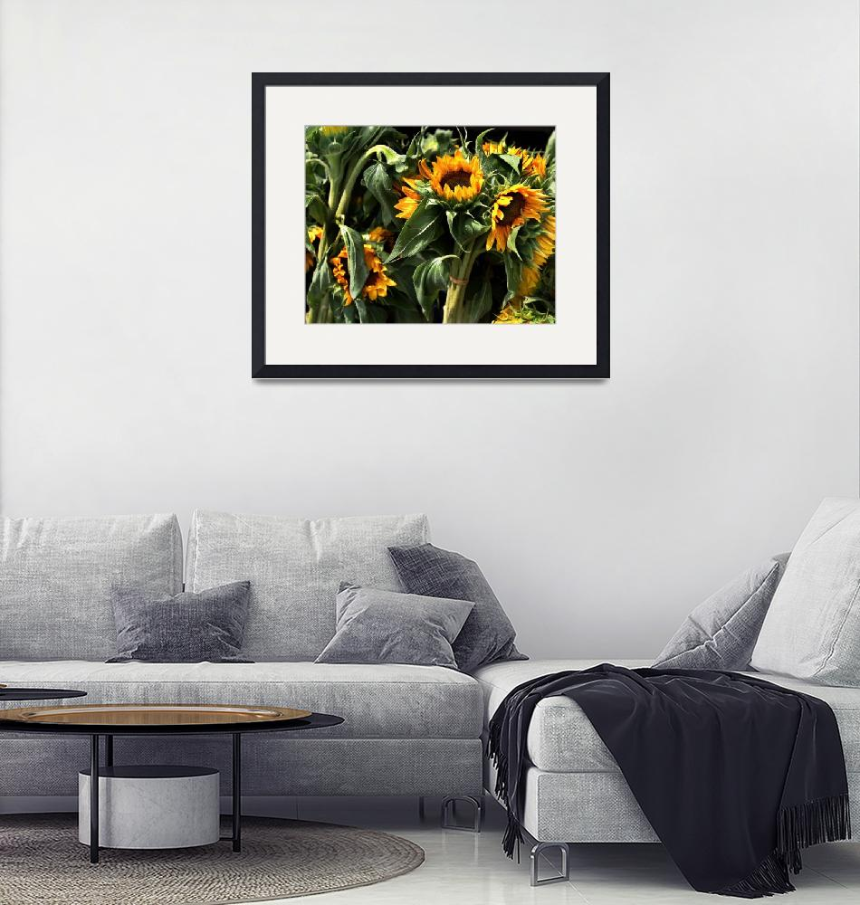"""Sunflowers""  (2009) by lillisphotography"