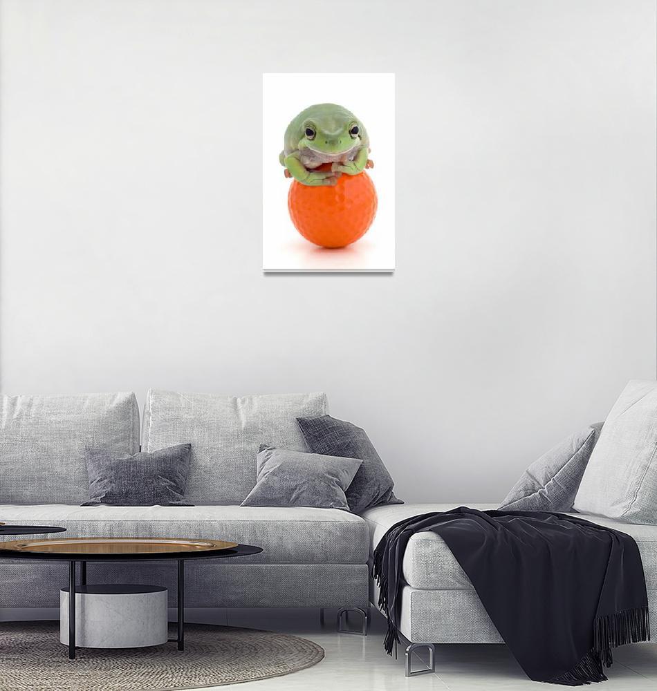 """Frog On A Golf Ball""  by DesignPics"