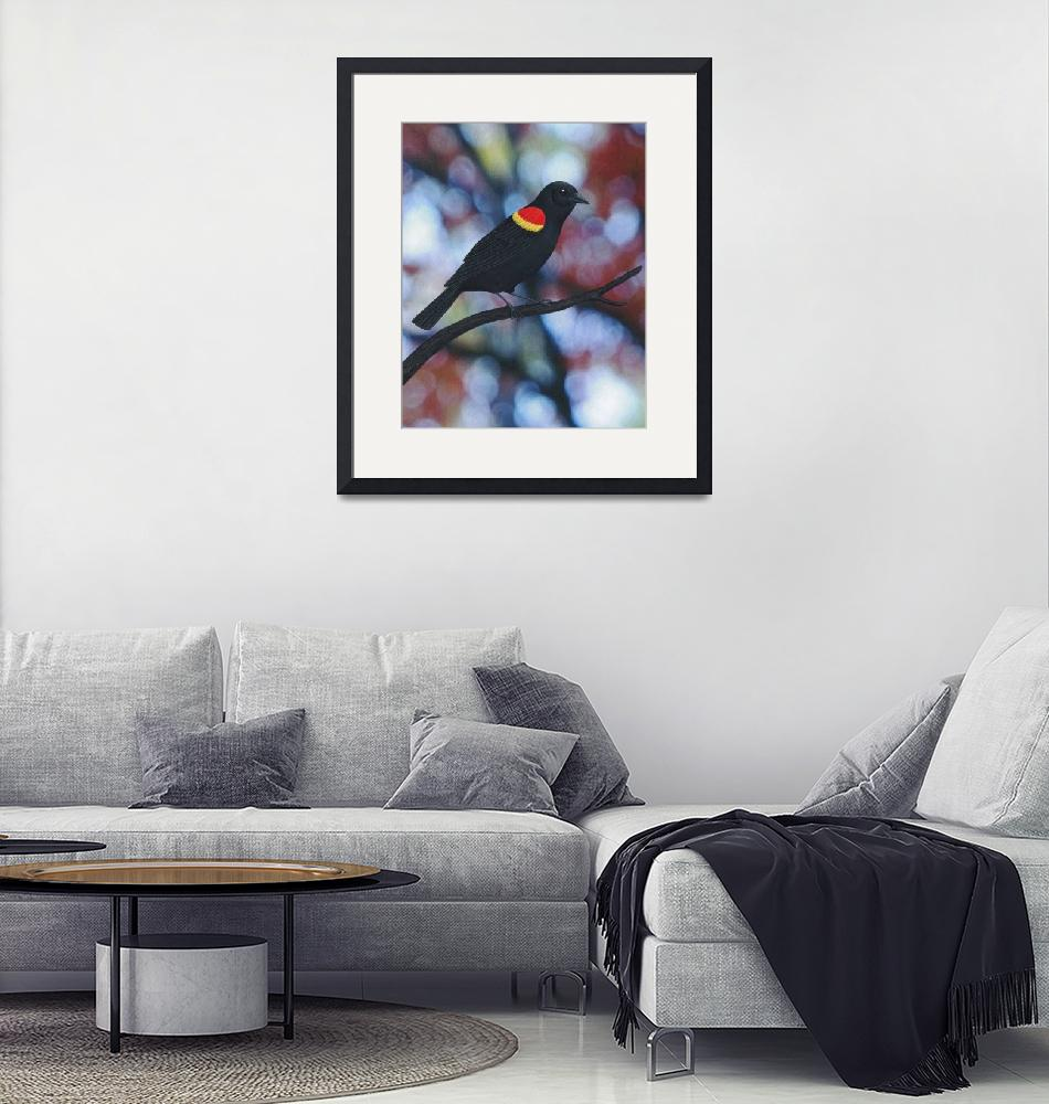 """""""red winged blackbird male"""" (2016) by sarahkdesigns"""
