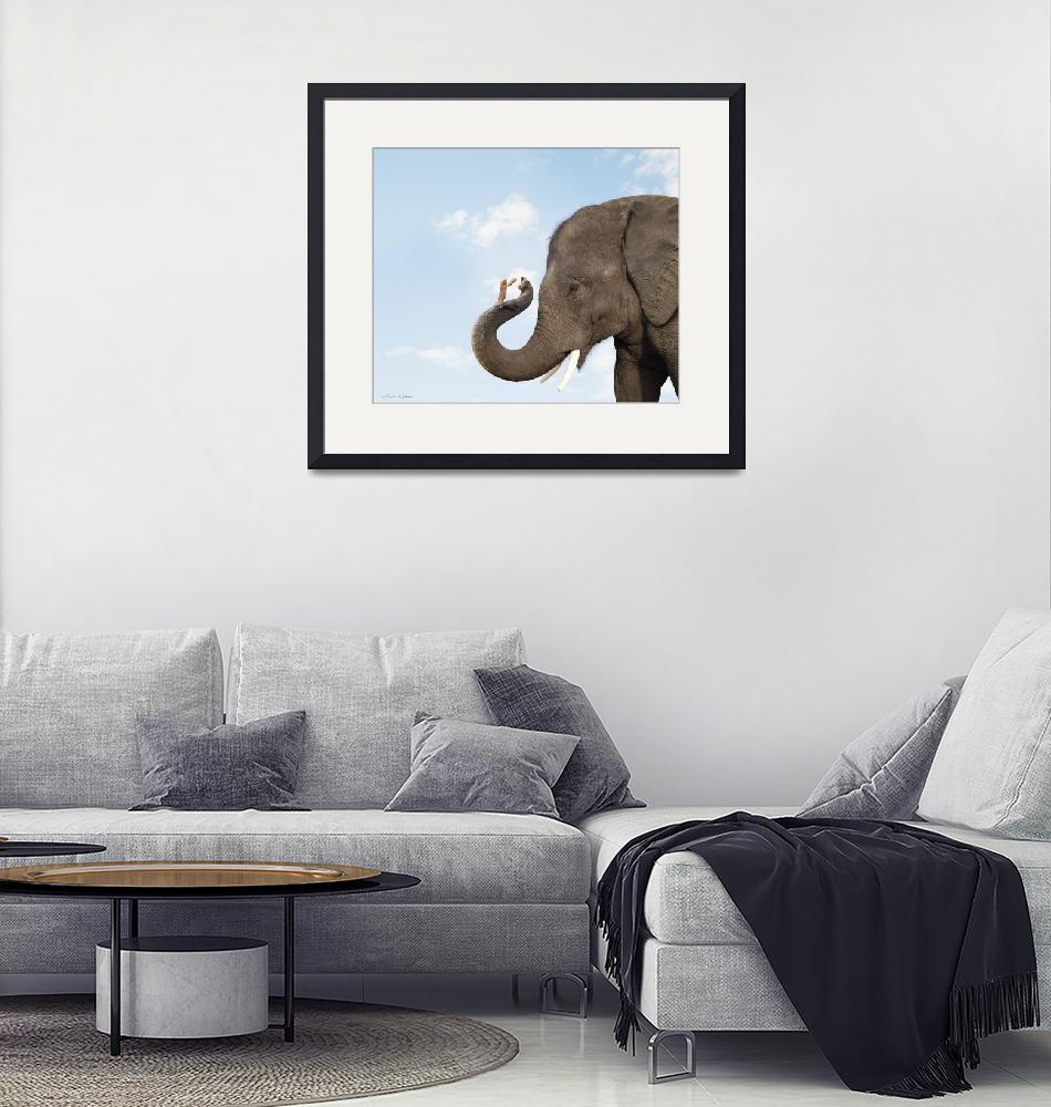 """Cute photo of elephant and mouse friends sharing a""  (2009) by StephanieDRoeser"
