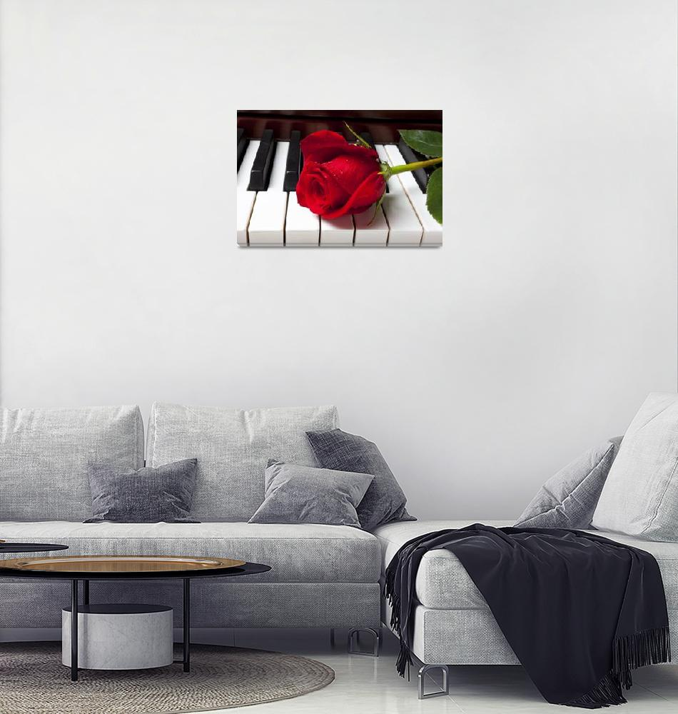 """""""Red rose on piano keys""""  (2012) by photogarry"""