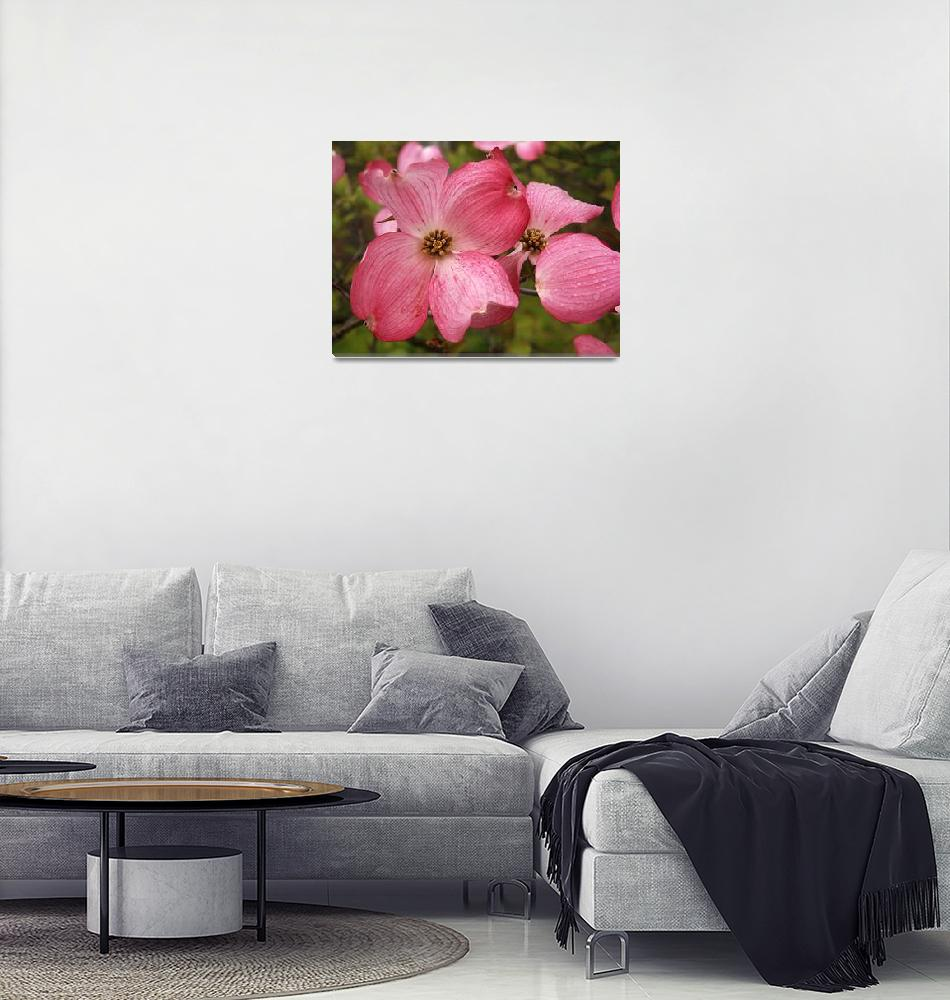 """""""Pink Dogwood""""  (2007) by deedemigjorn"""