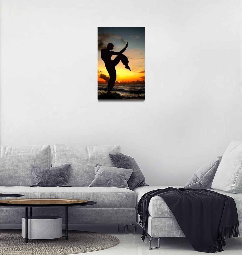 """Martial Artist""  (2010) by luceluceluce"