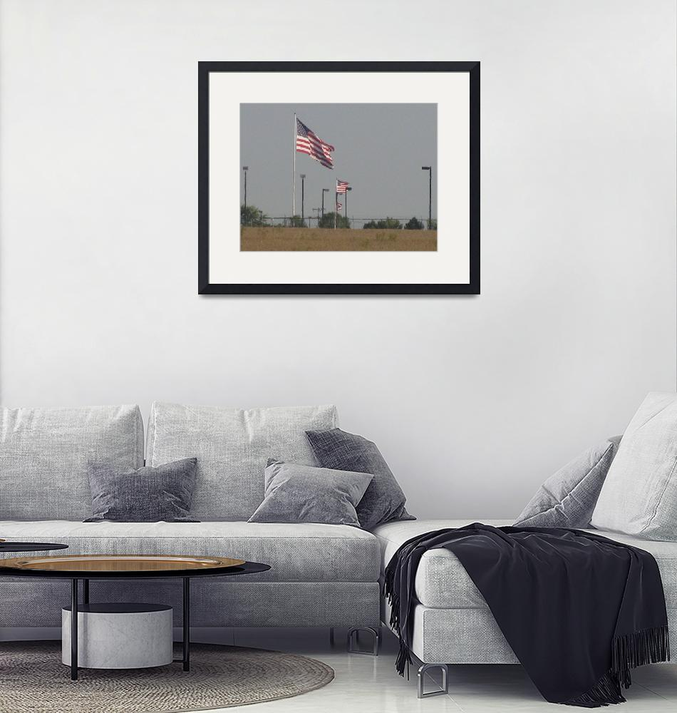 """""""Double Patriotism""""  by marcykelley"""