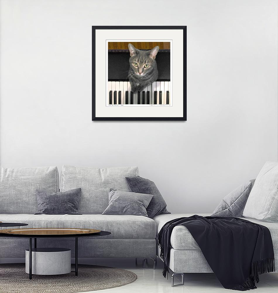 """""""Nora The Piano Cat™ - n0005""""  by ravenswingstudio"""