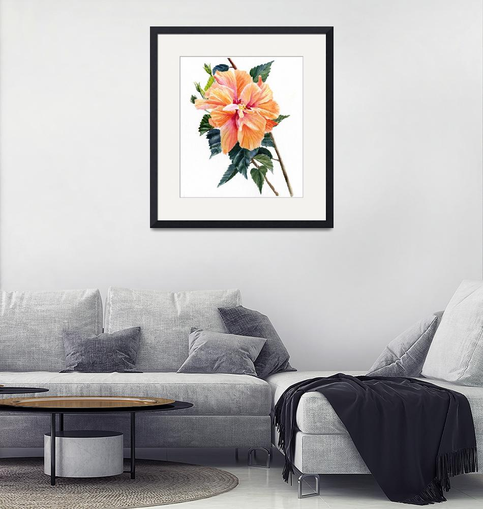 """""""Double Orange Hibiscus Blossom""""  (2018) by Pacific-NW-Watercolors"""