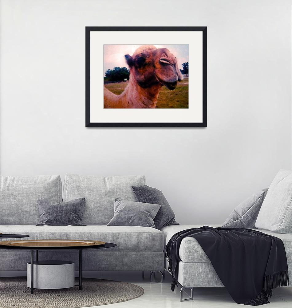 """""""The Drooling Hungry Camel""""  (2011) by LJdesigns"""