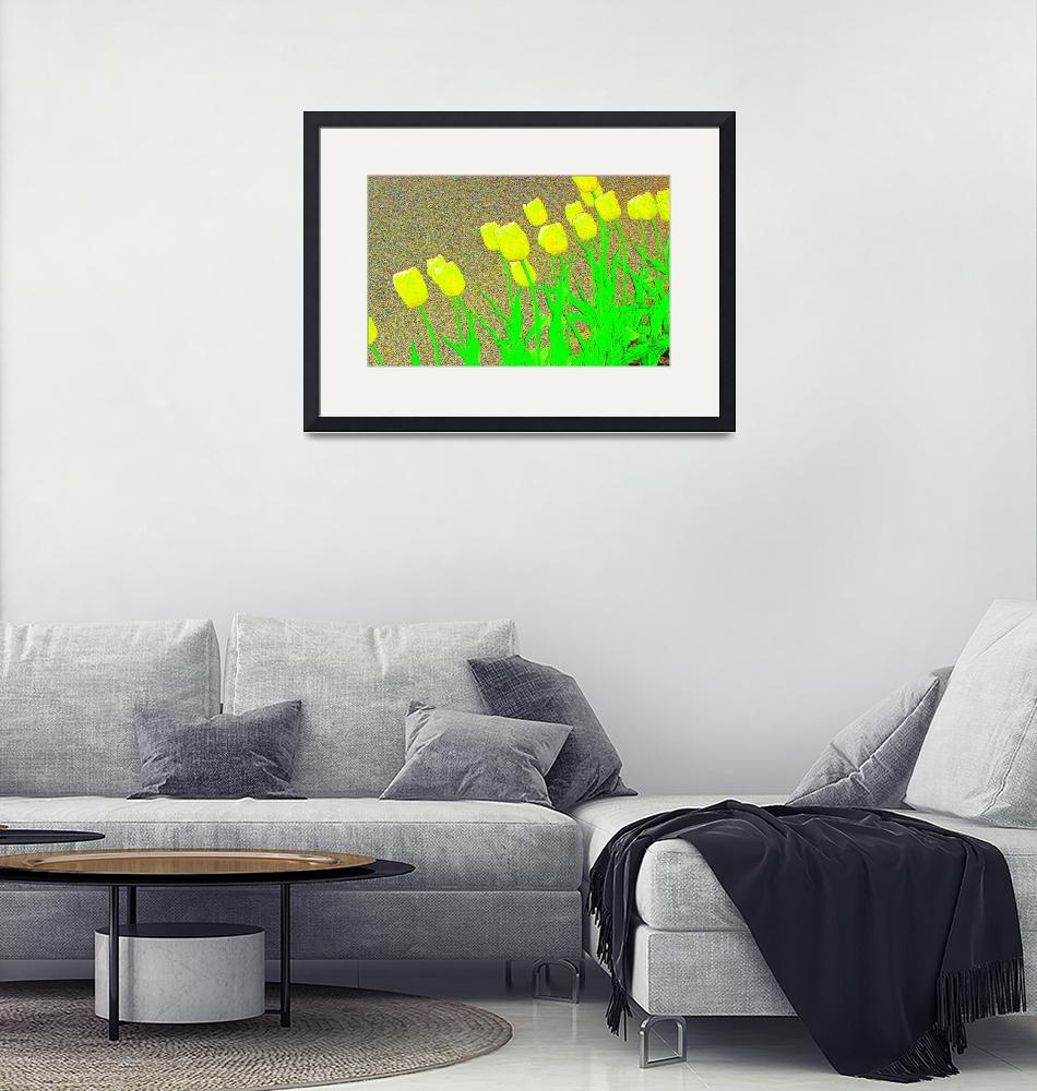 """Tulips by the Street II""  (2008) by michellecalkins"