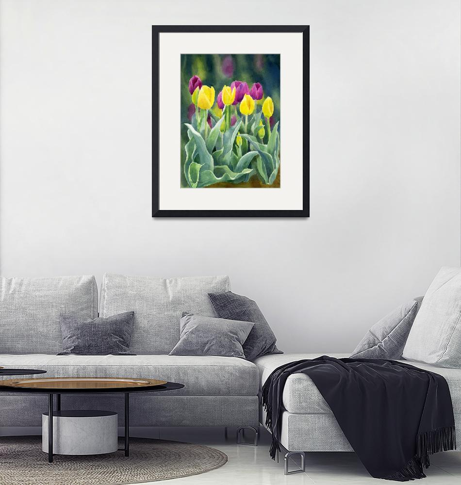 """Yellow and Red Violet Tulips dark background""  (2012) by Pacific-NW-Watercolors"