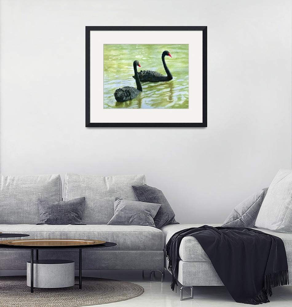"""Two Black Swans (trimmed version)""  (2011) by Pacific-NW-Watercolors"