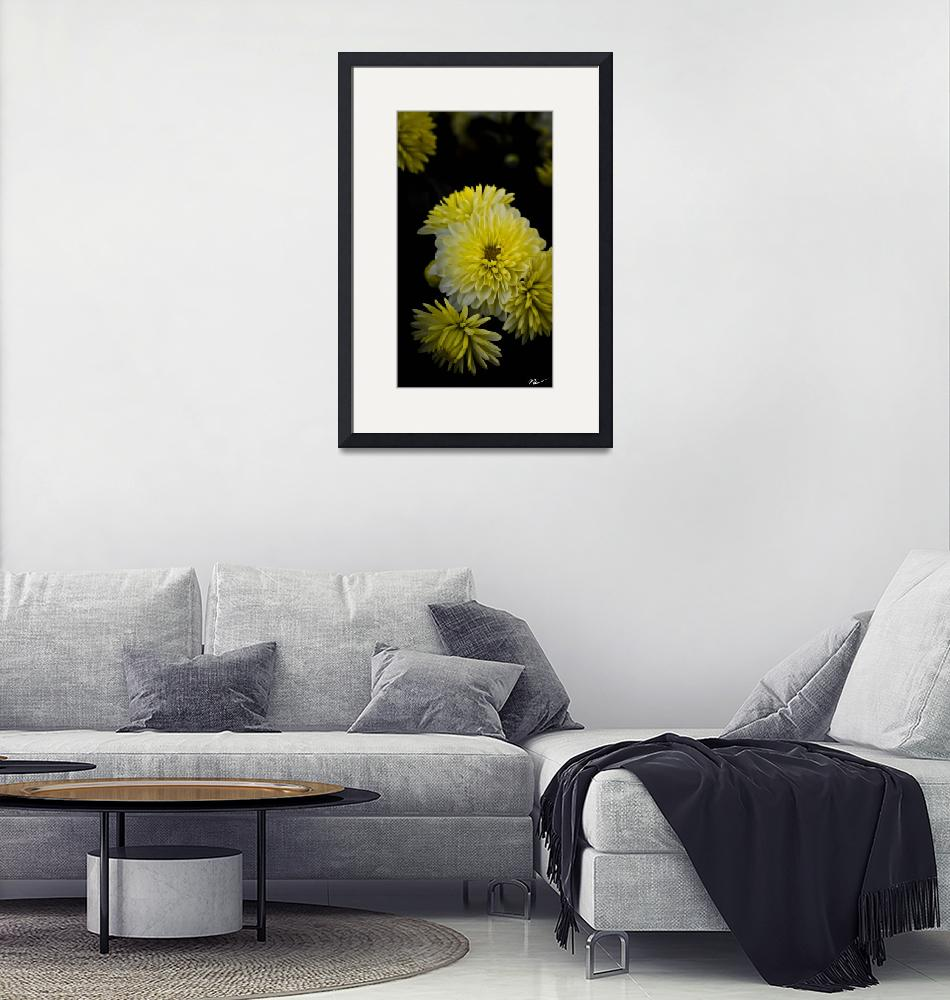 """""""Yellow Mums""""  (2012) by NCCreations"""