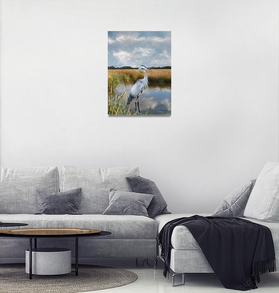 """Great Blue Heron at Brooker Creek""  (2015) by spadecaller"