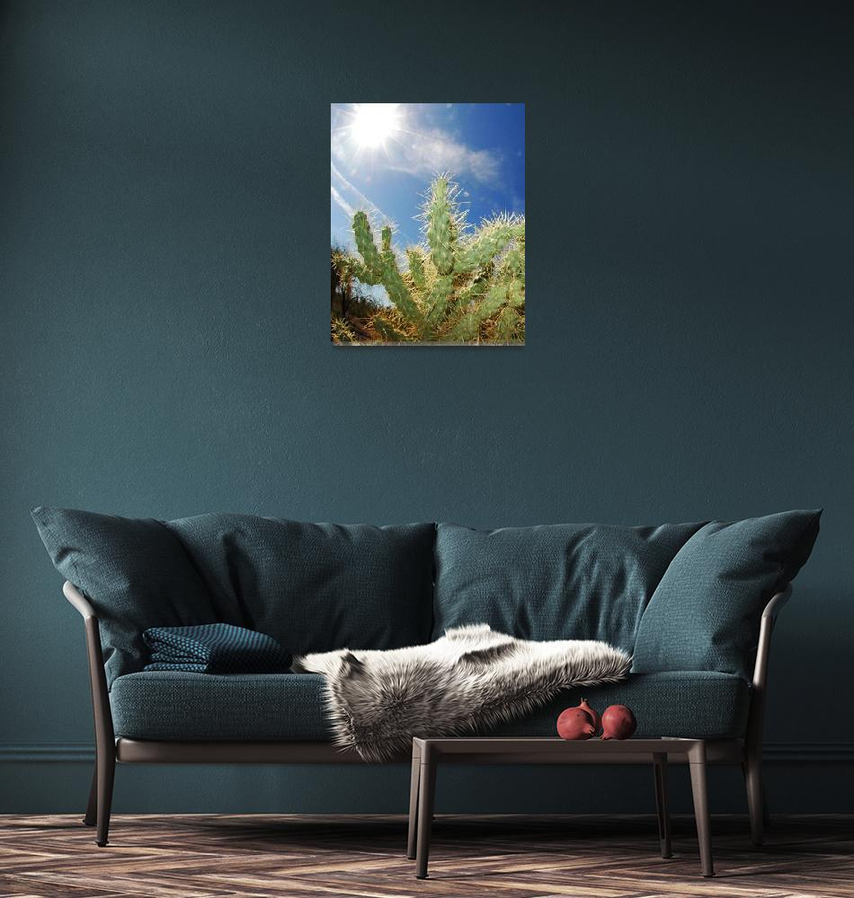 """""""Dry Heat Sun Over Cactus""""  (2010) by mather_boehm_images"""