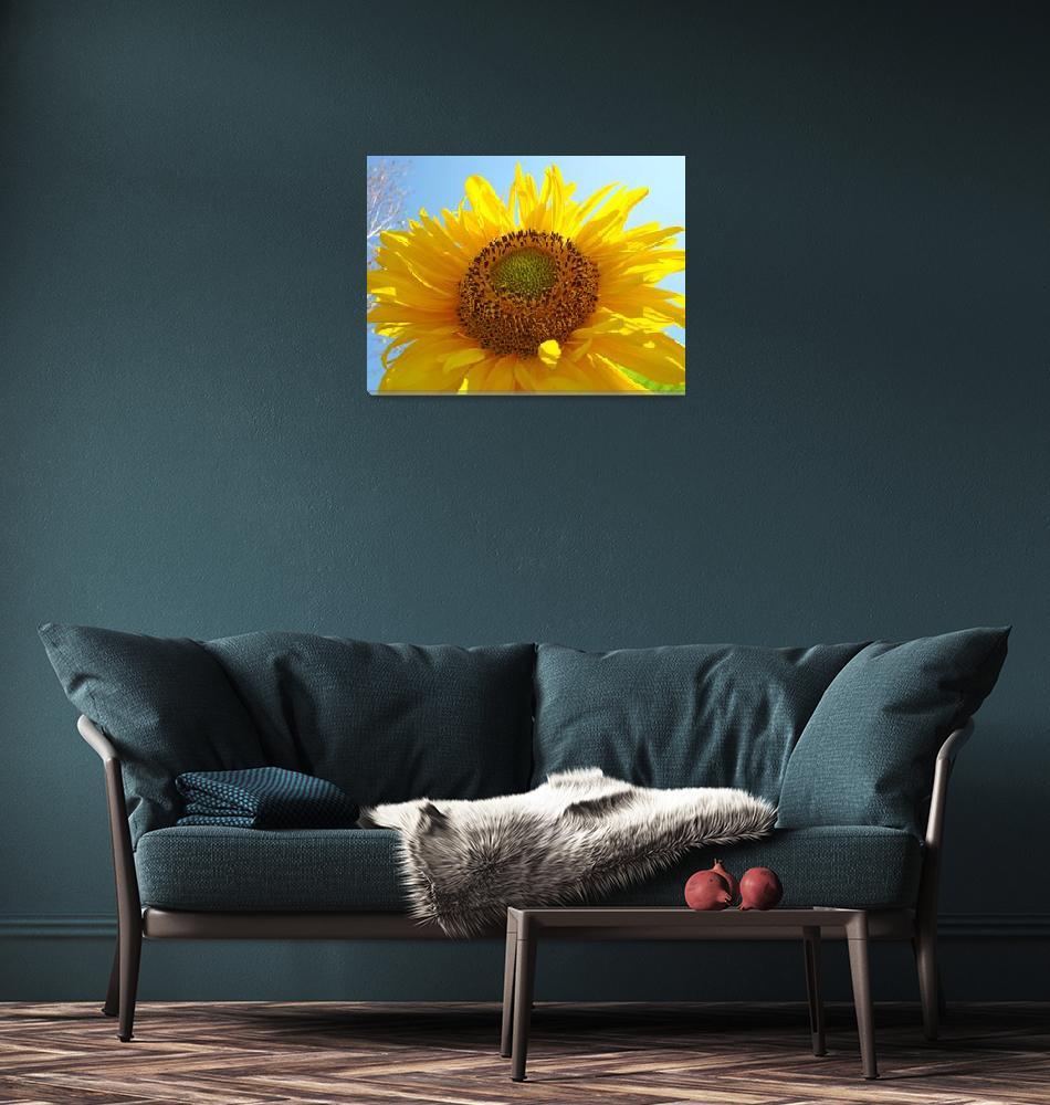 """SUNFLOWER Sunlit Blue Sky Baslee Troutman Art""  (2009) by BasleeTroutman"